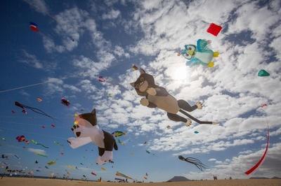 カナリア諸島で国際たこ揚げ大会、色鮮やかなたこが青空を泳ぐ
