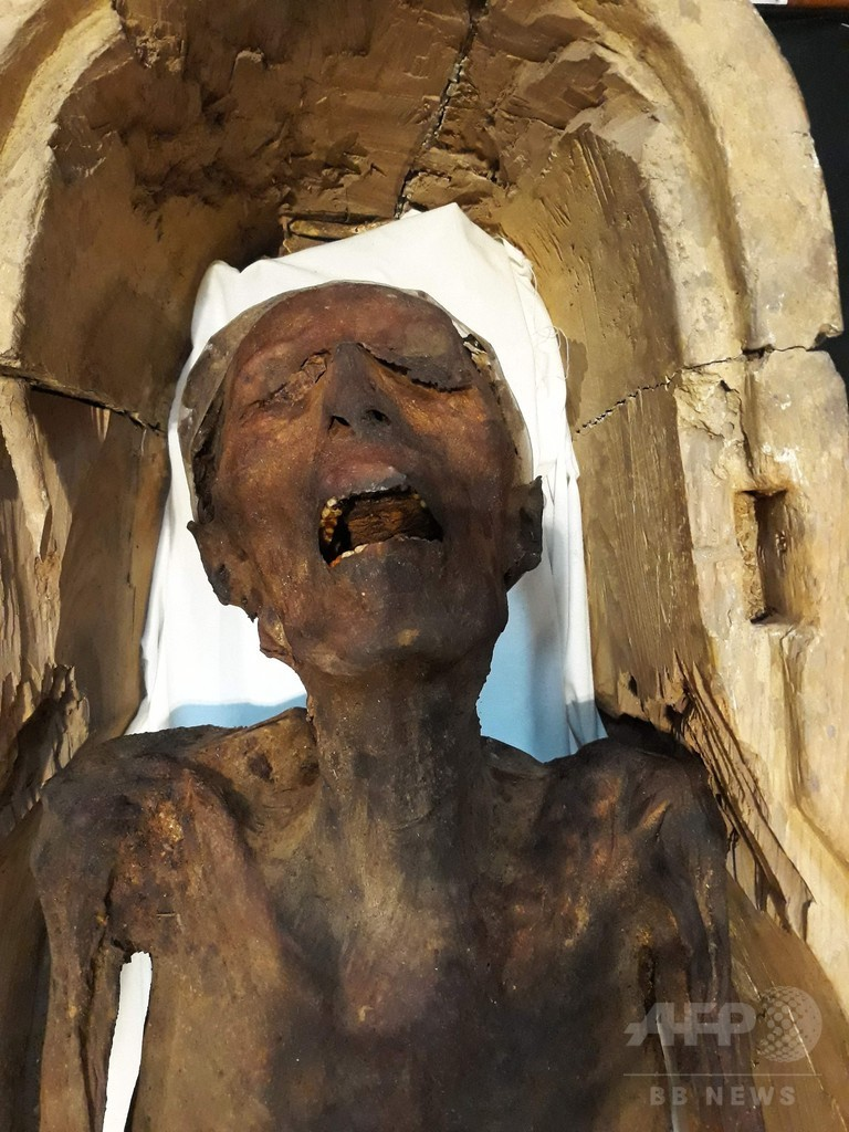 エジプト考古学博物館、「叫ぶミイラ」公開 ファラオ暗殺を企てた王子