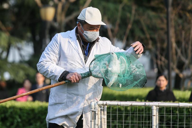 中国の鳥インフル、感染者3人増えて21人に