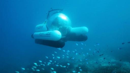 動画:豪グレートバリアリーフで相乗り潜水艇ツアー、ウーバーが期間限定提供