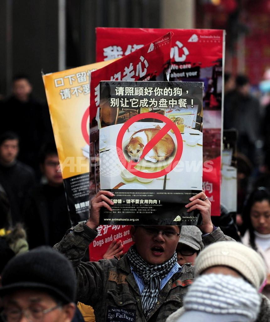 中国初の動物愛護法、犬肉・猫肉料理禁止へ