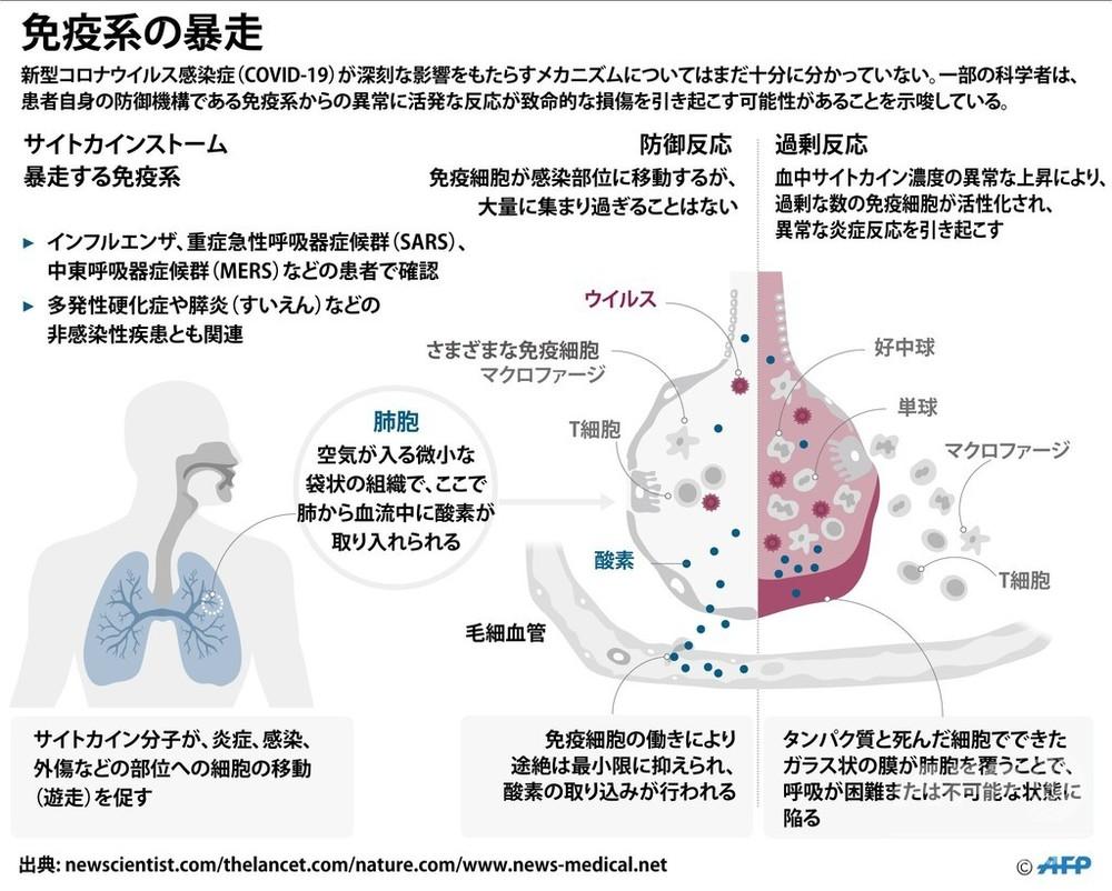反応 過剰 コロナ ウイルス