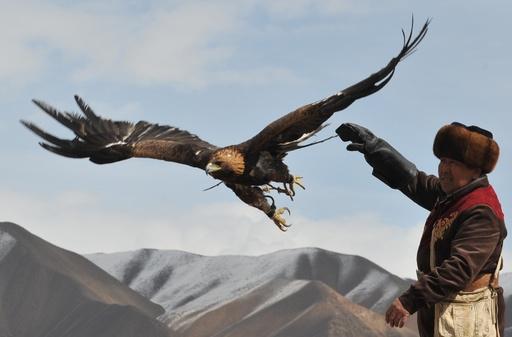 キルギスで狩猟の祭典、鷹匠ら妙技披露