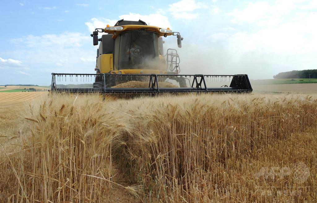 中国による農地買収を規制へ、マクロン仏大統領が言明