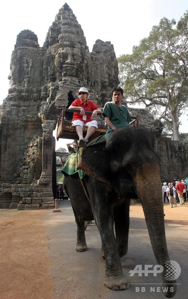 アンコール遺跡でのゾウ乗り体験禁止へ カンボジア