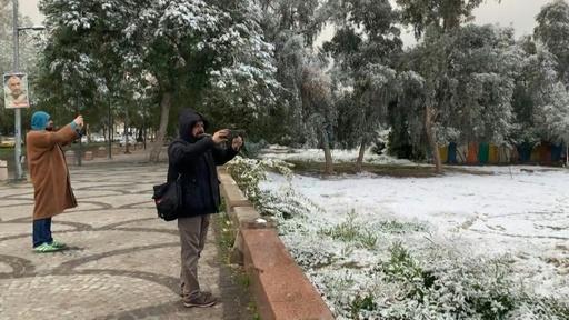 動画:イラク首都にごく珍しい雪、過去100年で2回目
