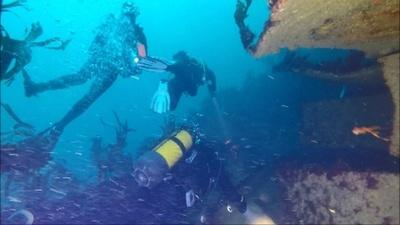 動画:40年前の沈没船、ダイバーたちのお気に入りスポットに 仏