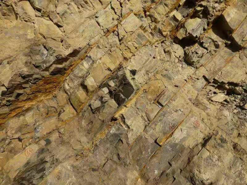 地球最初の大量絶滅、期間は20万年 雲南省の地層で解明