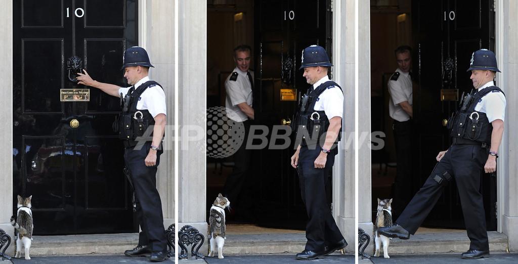 「お入り下さいラリー様」、英首相官邸のネコは警官より偉い?