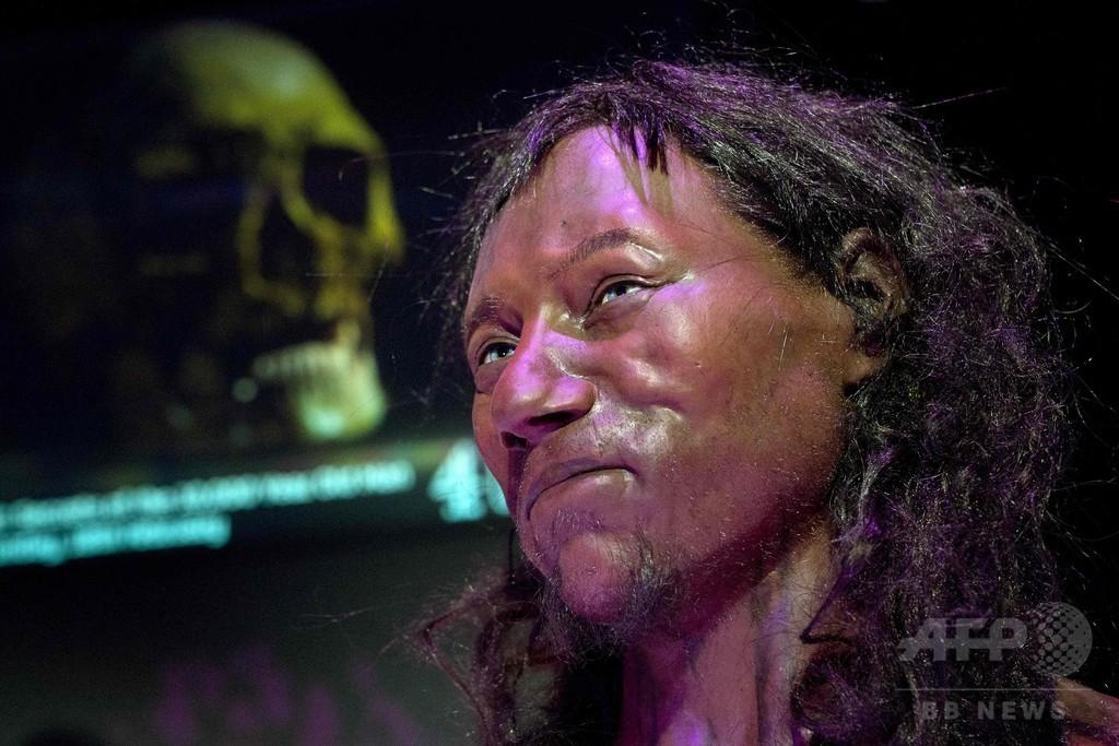 英国で発見の古代民族、肌黒くて目は青かった DNA分析で明らかに