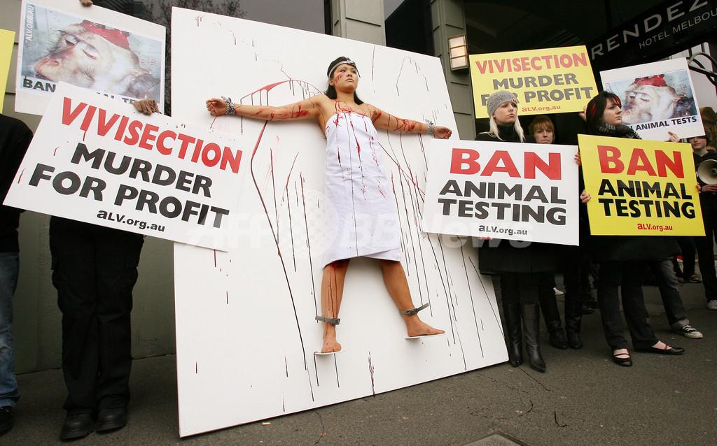 豪の動物保護団体、「動物実験の禁止」を訴え体を張った抗議