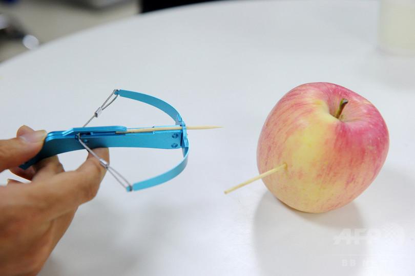 大人気の「爪ようじボーガン」が物議、販売中止要請も 中国