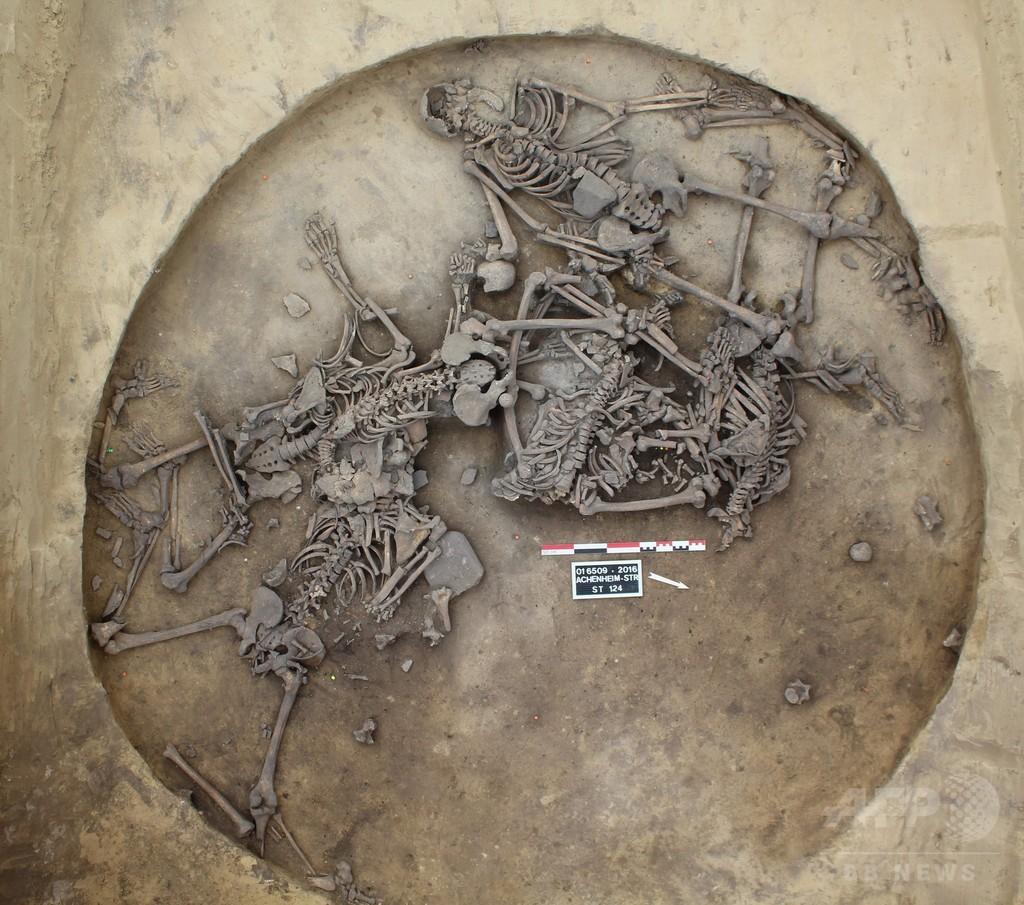 6000年前の集団虐殺か、10人の人骨発掘 仏チーム