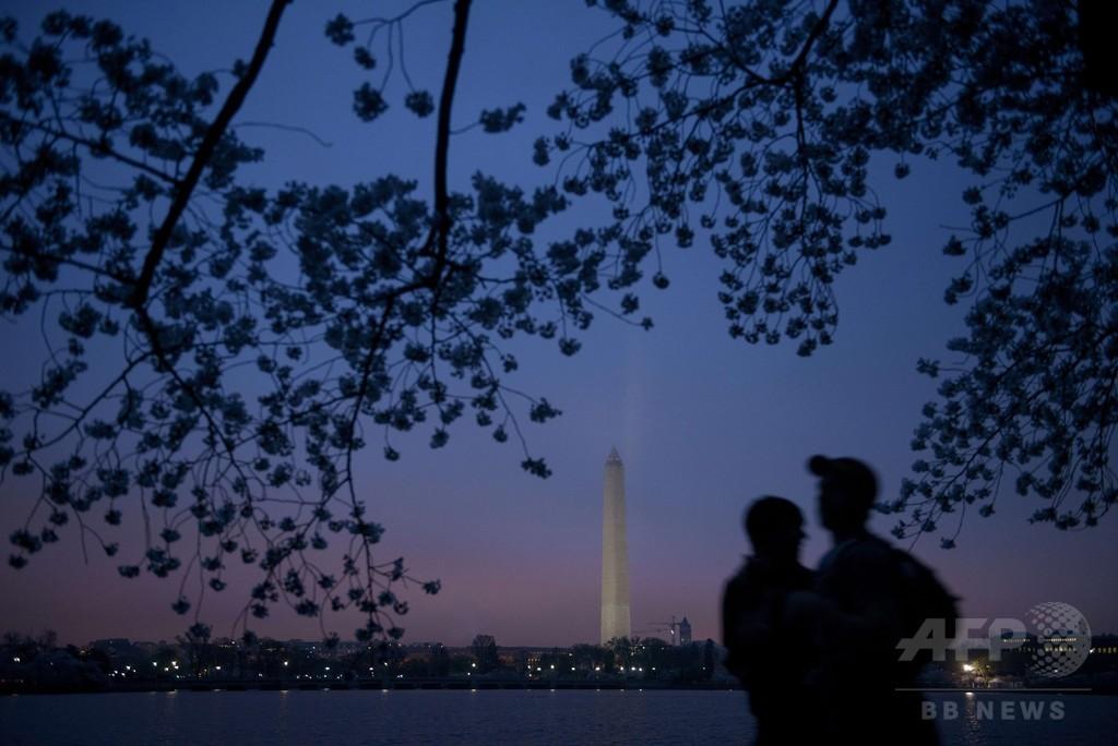 朝焼けに浮かぶ桜のシルエット、米首都