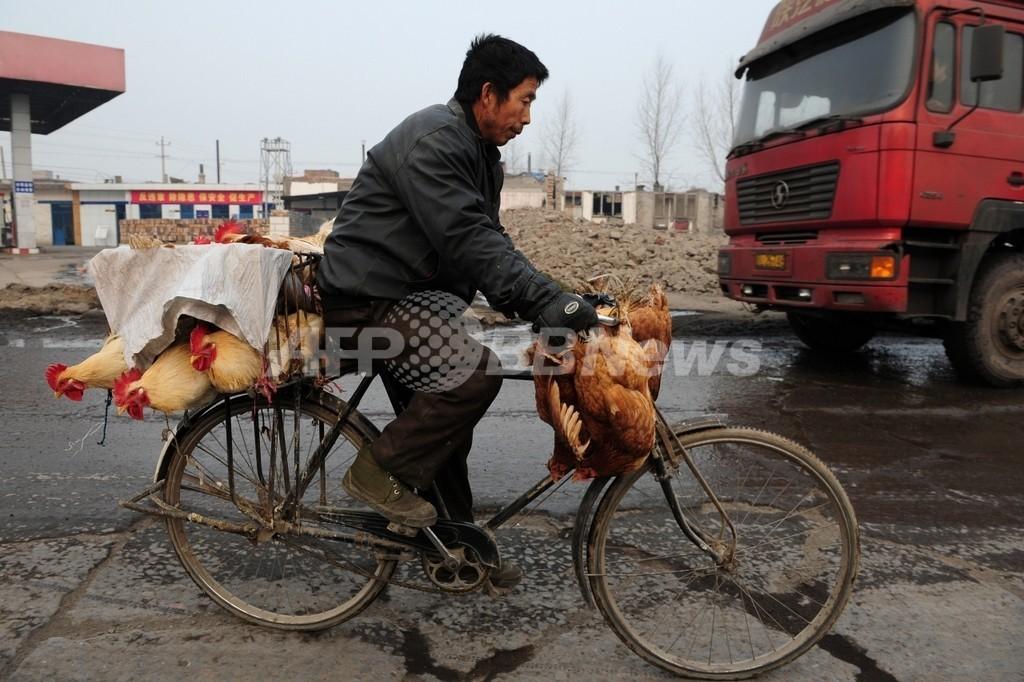 2歳児が鳥インフルエンザで重体、中国