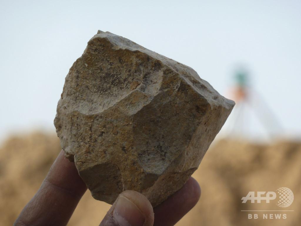 東アフリカ人類発祥説に異議、アルジェリアで240万年前の石器発見