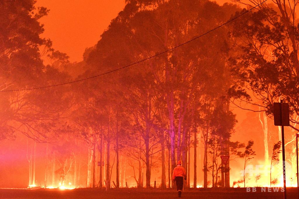 豪大学、森林火災予測衛星を開発中 5年後の実用化目指す