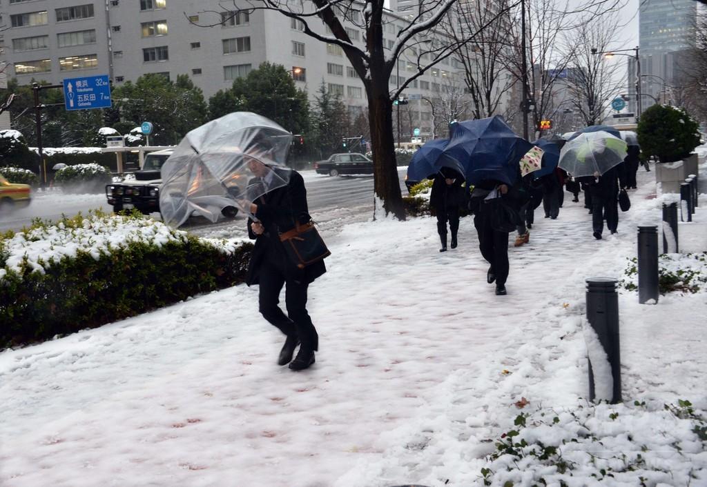 東京都心で大雪、交通機関に乱れ
