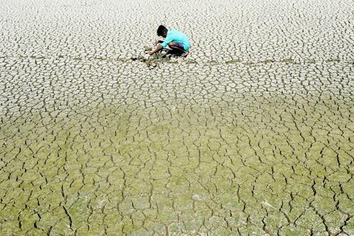 水をめぐるけんかで男性死亡、猛暑のインド
