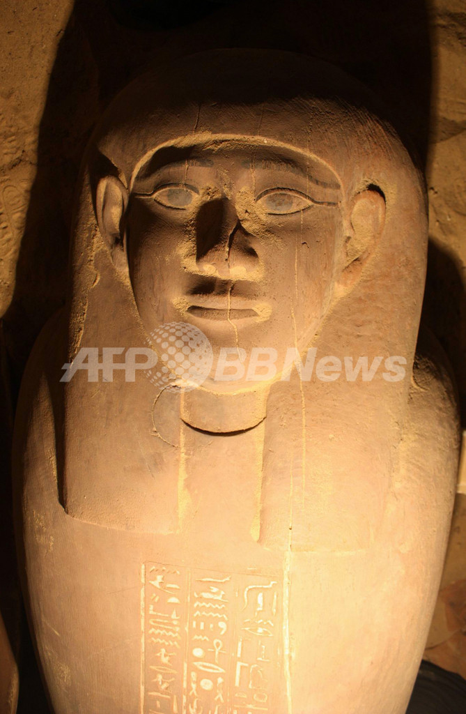 古代エジプト王朝の正確な年代を解明、植物を炭素年代測定法で調査
