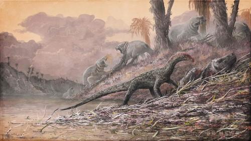 恐竜の祖先はワニ似、進化の歴史書き換えか 研究