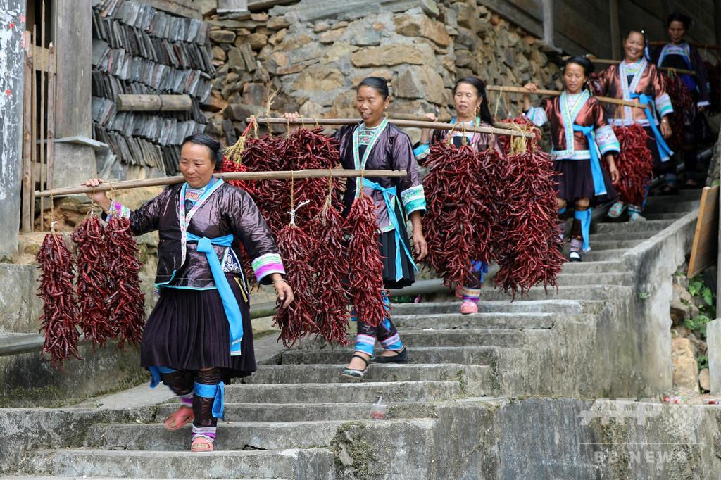 少数民族の集落で唐辛子の「美人コンテスト」 中国