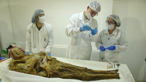動画:エクアドルで発見のミイラ、関節炎の歴史的背景知るヒントに?