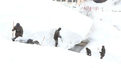 動画:記録的な大雪のオーストリア 学校などの除雪を軍が実施