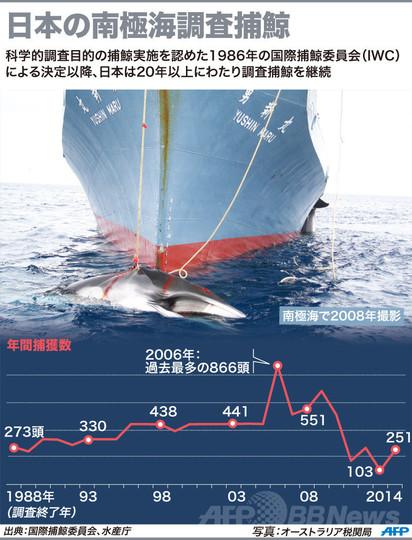 南極海調査捕鯨、今季は251頭捕獲 水産庁