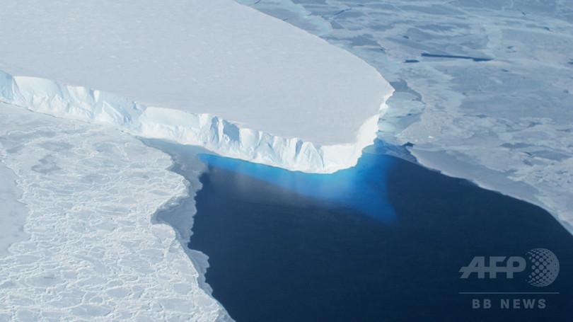 氷山漂着でペンギン15万羽、生息地に戻れず 南極