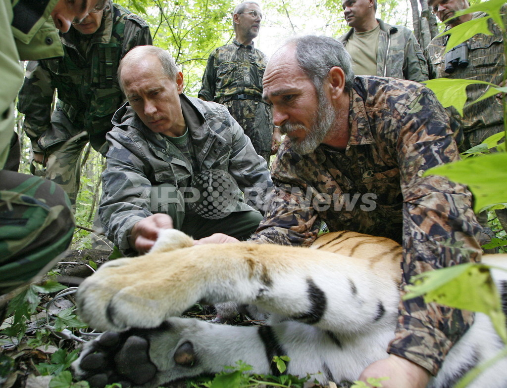 「タフガイ」プーチン露首相、トラを仕留めて人命救助