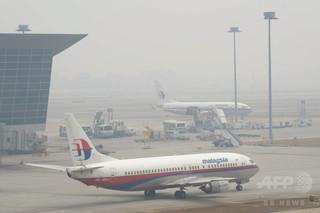 一緒に搭乗予定だった猫が行方不明に、飼い主がマレーシア航空を非難