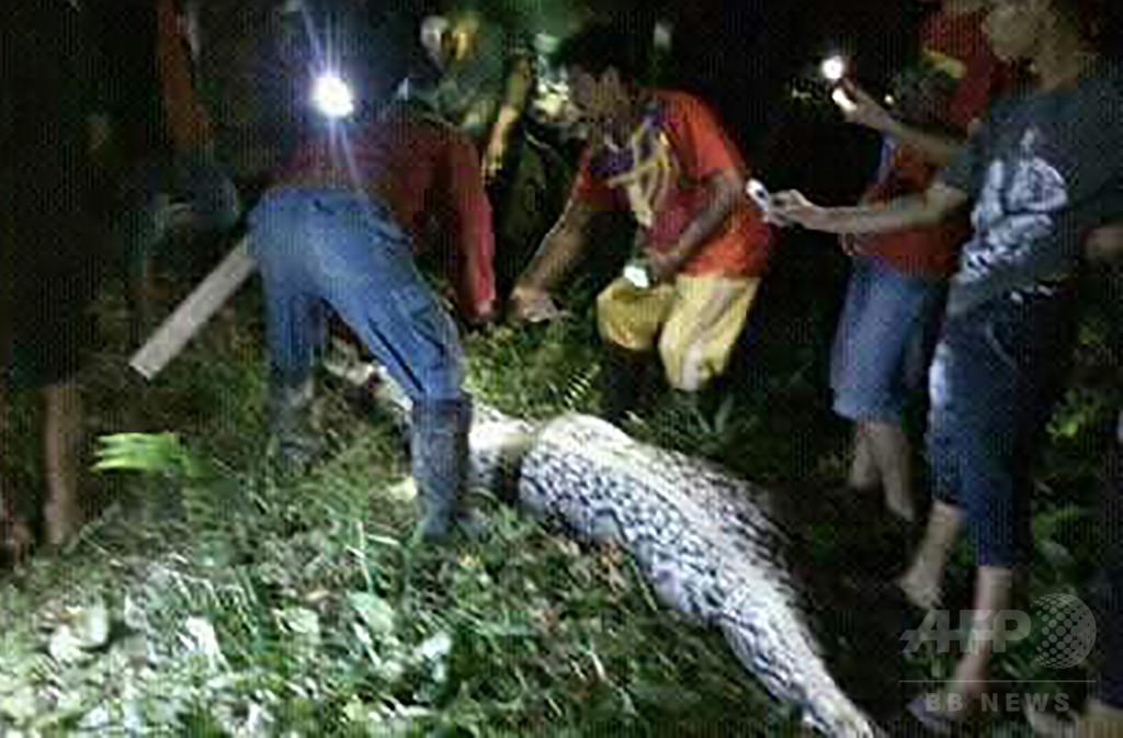 体長7メートルのヘビが人をのみ込む 腹部から男性の遺体 インドネシア