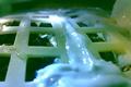 中国の月探査機内で綿花が芽吹く、月での植物の発芽は史上初