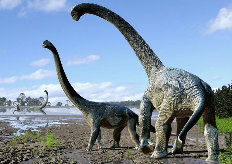 14メートル超える新種草食恐竜の...