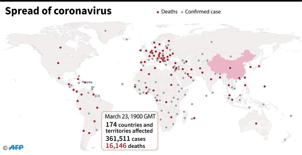 新型コロナウイルス、現在の感染者・死者数(24日午前4時時点)