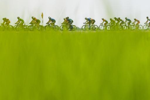 【今日の1枚】稲の波の向こう側を駆け抜ける