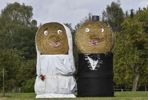 【今日の1枚】牧草地で結婚披露宴