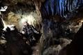 ネアンデルタール人が食人、ベルギーの洞窟遺跡から証拠