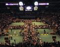 ついに開幕、世界最大級のドッグショー