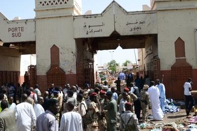 ボコ・ハラムの自爆攻撃で17人死亡、チャドとナイジェリア