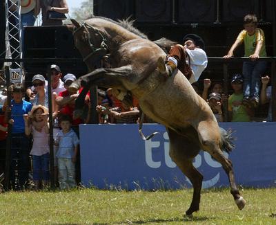 南米のカウボーイ、ガウチョのフェスティバル開催