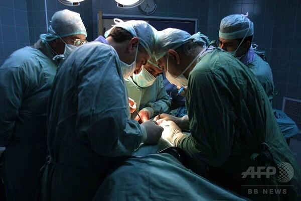 移植組織を無傷で解凍する新技術、臓器不足の軽減に期待