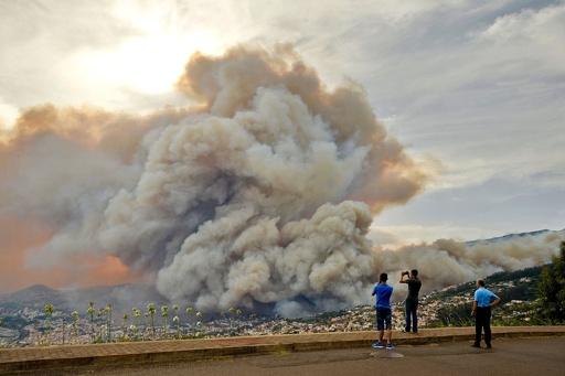 ポルトガルの広範囲で森林火災、観光地の島でも250人避難