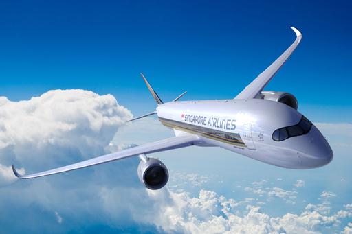 機内食から人の奥歯?! シンガポール航空が謝罪、調査を開始