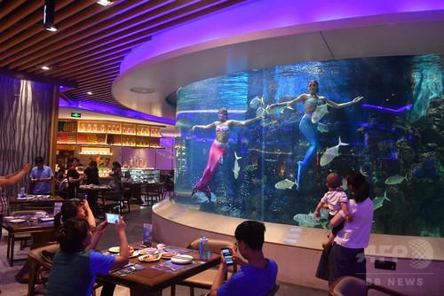 海底の人魚と食事ができるレストラン、アモイ