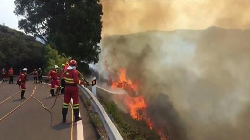 動画:「環境的惨事」 スペイン・カナリア諸島の森林火災、制御不能状態