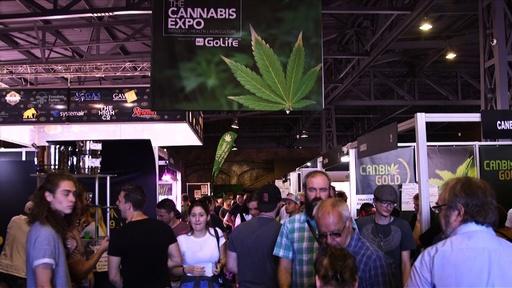動画:南アフリカで「大麻エキスポ」開催、愛好家たちが集う