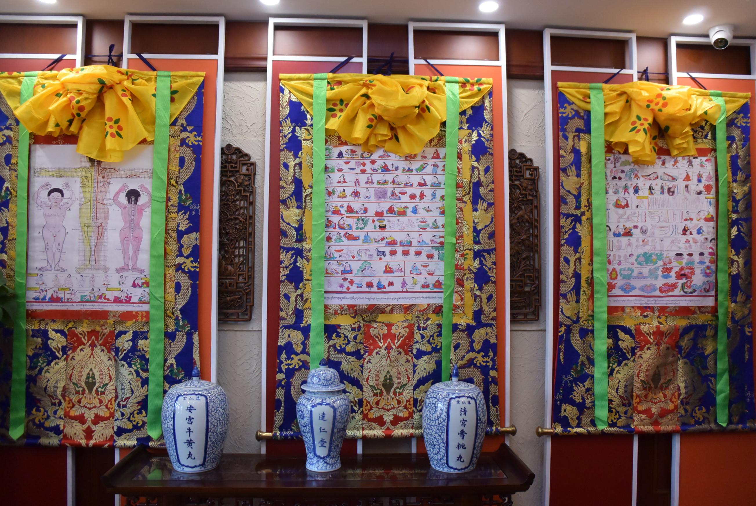 中医薬とチベット医薬の魅力に触れる 天津市