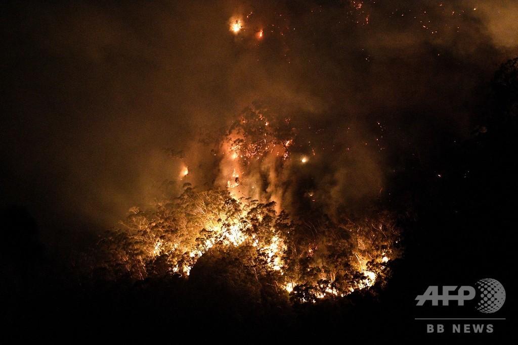 シドニー北郊で「メガ火災」、複数の森林火災合流で制御不能に